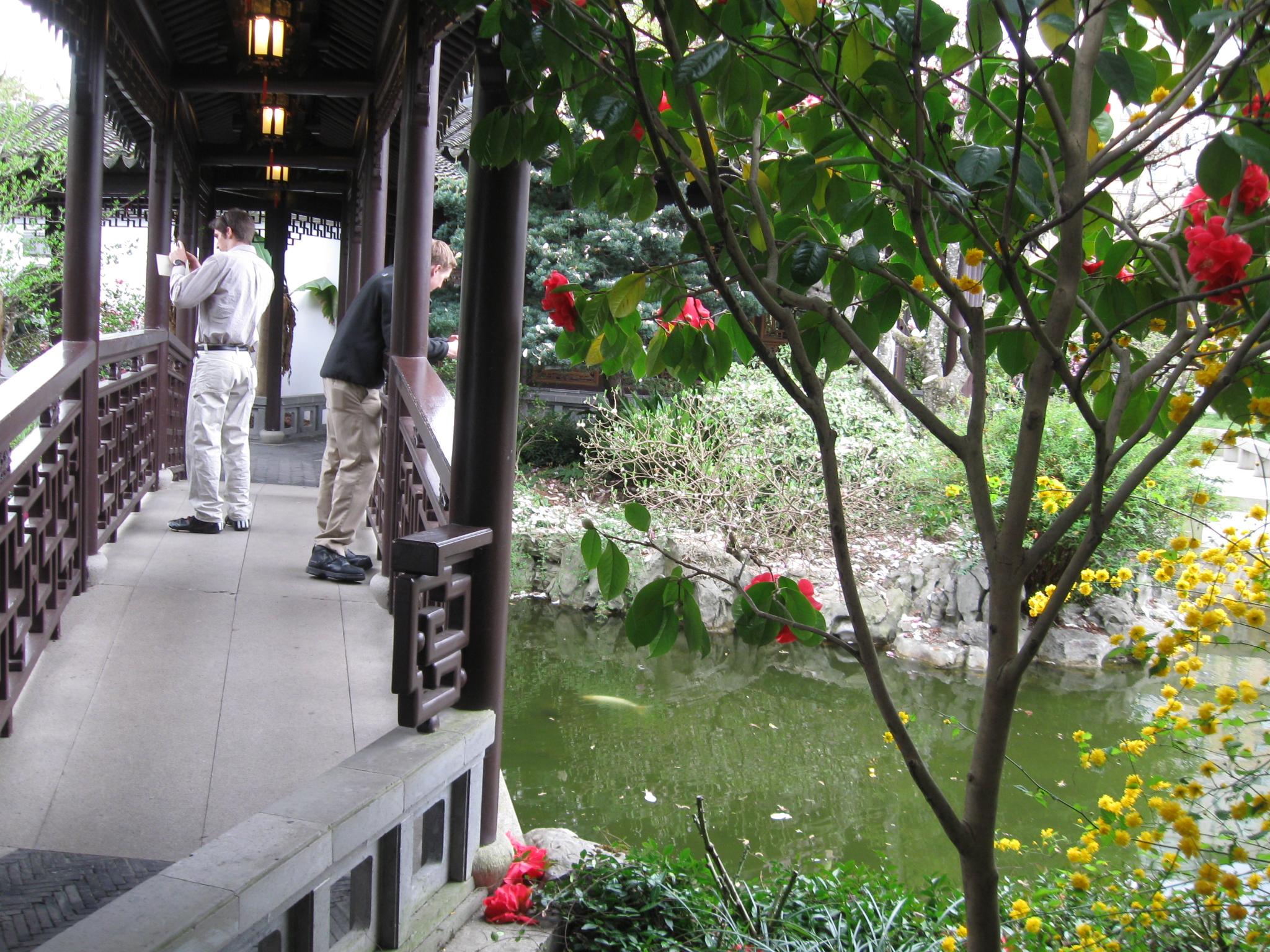 Knowing the Fish Pavilion at Lan Su